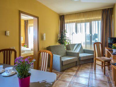 Отель Дуна Пакш - апартамент